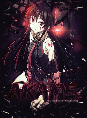 Akame پیپر وال .