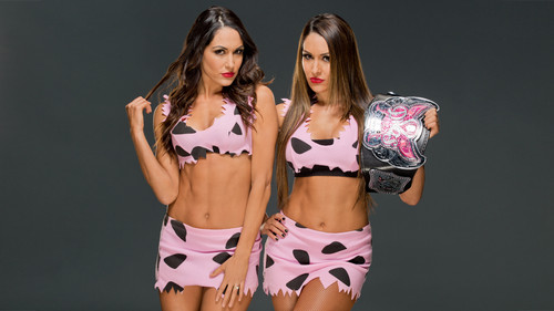 WWE Divas wallpaper called Bella Twins
