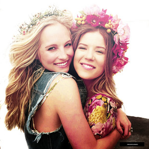 Candice Accola edits and icone