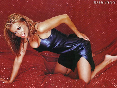 Carmen Electra wallpaper with a leotard, a maillot, and a bustier entitled Carmen Electra