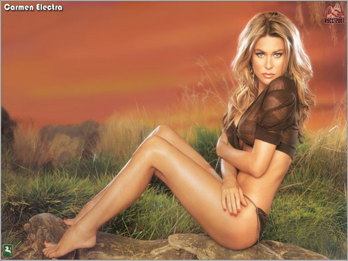 Carmen Electra wallpaper probably containing bare legs, a bustier, and attractiveness entitled Carmen Electra