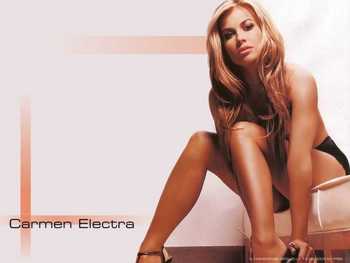 Carmen Electra wallpaper containing attractiveness, tights, and a portrait called Carmen Electra
