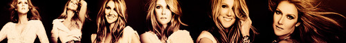 Celine Dion foto containing a thatch called Celine Dion - Banner