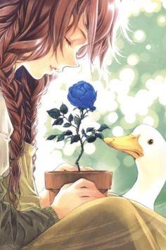 Flower, La Vien En Rose