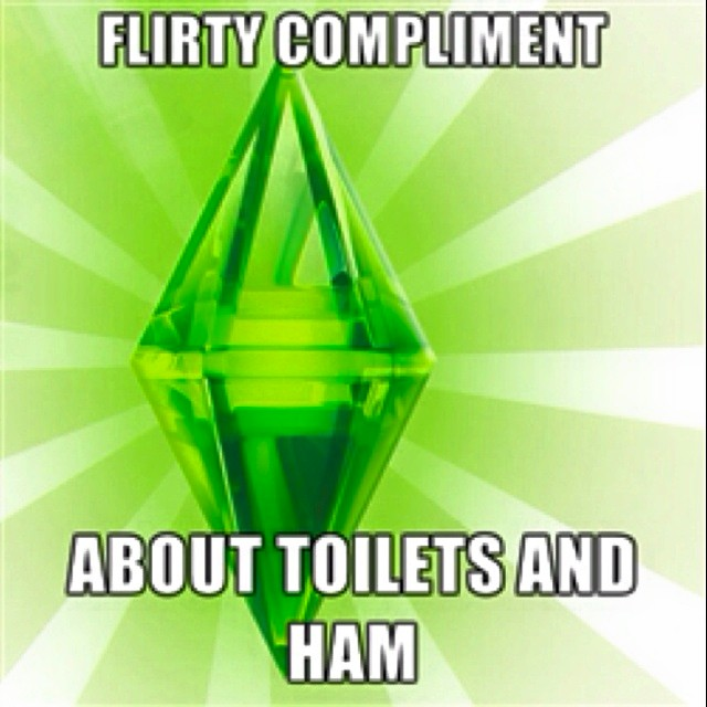 Funny-Sims-Memes-and-Pics-the-sims-3-38317454-640-640.jpg