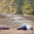 Gabriel Stokes - the-walking-dead photo