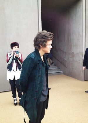 Harry E Styles