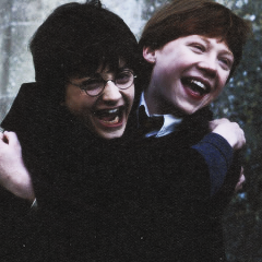 Harry and Ron Icon