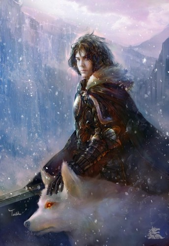 A Song of Ice and Fire wallpaper possibly with a rifleman and a navy seal entitled Jon Snow Ghost