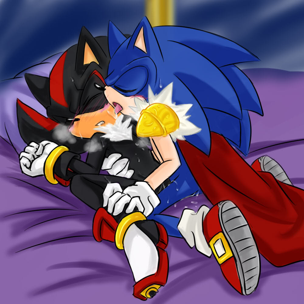 King Sonic and Shadow