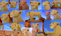 Nala SP Collage - simba-and-nala wallpaper