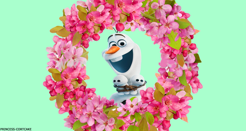 Frozen Fever Hintergrund possibly with a bouquet titled Olaf
