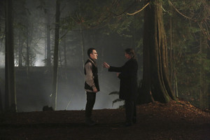 Once Upon a Time - Episode 4.17 - cuore of oro
