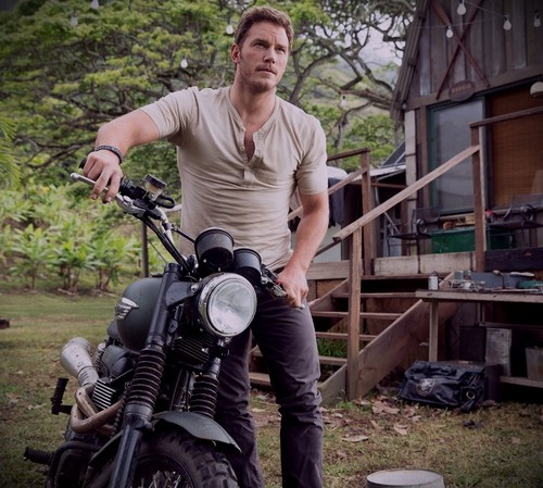 Jurassic World kertas dinding possibly containing a motorcycle cop called Owen Grady