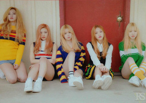 Red Velvet Ice Cream Cake Scans