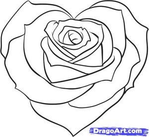 Rose tim, trái tim
