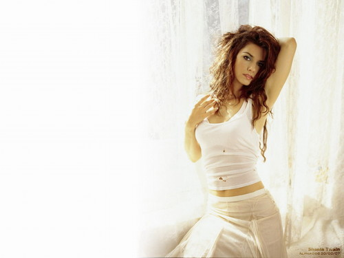 shania twain fondo de pantalla possibly with a chemise, a cóctel, coctel dress, and a chemise called Shania Twain