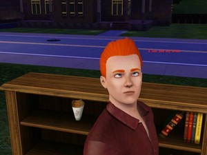 Sims 3 - Funny captions