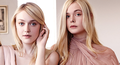 The Hollywood Reporter - elle-fanning photo