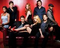True Blood Cast - true-blood wallpaper