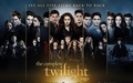 twilight-series - Twilight Saga wallpaper