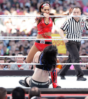 WrestleMania 31 Digitals 3/29/15