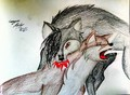 bloodhound omegas: revenge  - alpha-and-omega fan art