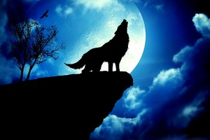 blue moon howlin'
