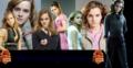 hermione banner - hermione-granger photo