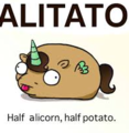 lol idk i love potato corns - unicorns photo