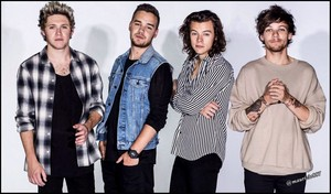 one direction,2015