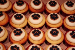 purrfect cakes