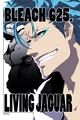 °°Grimmjow °° - bleach-anime photo