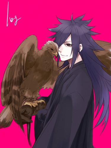 Naruto Uzumaki (shippuuden) fond d'écran titled ºº N a r u t o ºº