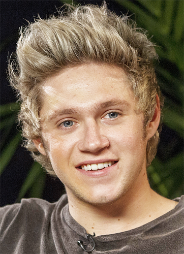 Niall Horan Hintergrund containing a portrait titled Niall Horan