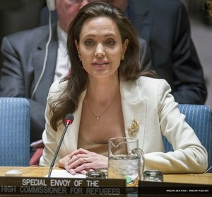 Angelina Jolie UN Security Council