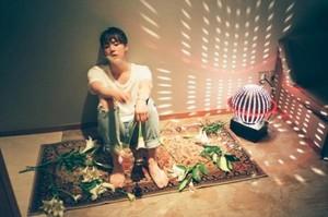 BTS Teaser Pic