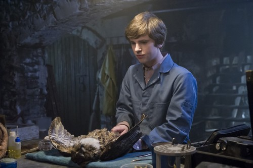 "Bates Motel karatasi la kupamba ukuta probably containing a barbecue titled Bates Motel ""The Last Supper"" (3x07) promotional picture"