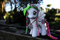 Blossomforth - my-little-pony photo
