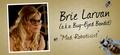 Brie Larvan - the-flash photo