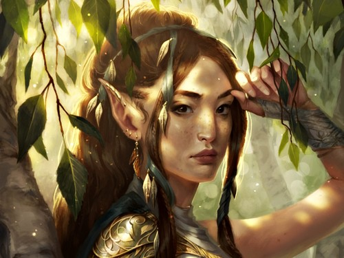 Fantasy Images Elf HD Wallpaper And Background Photos