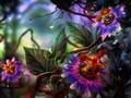 Fantasy Flowers