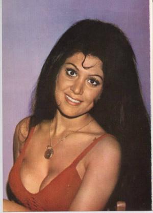 Feriha Cansel ( 1944- 1983)