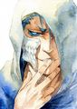 Grimmjow - bleach-anime photo