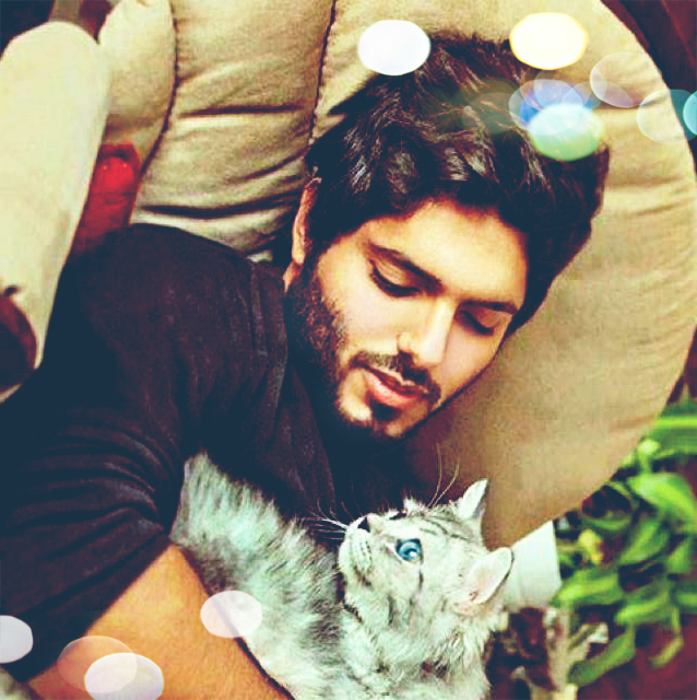 display pictures images handsome boy with cat wallpaper and