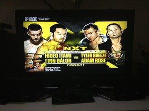 Hideo Itami and Finn Bálor vs. Tyler Breeze and Adam Rose