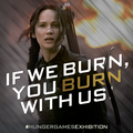 Hunger Games Exhibition - the-hunger-games photo