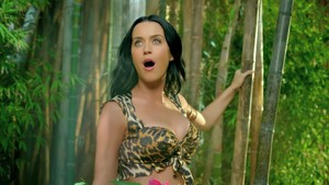 Katy Perry- Roar