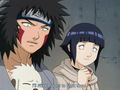 Kiba, Akamaru, and Hinata watch with concern