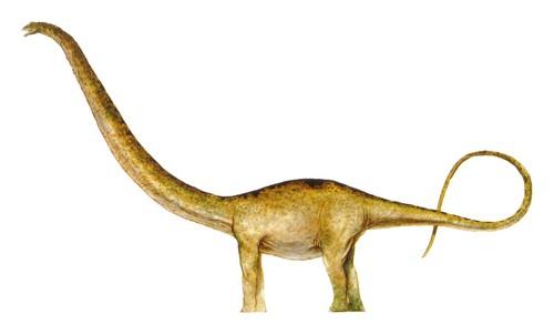 Jurassic Park پیپر وال entitled Mamenchisaurus